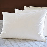 Feather Pillow Cleaning